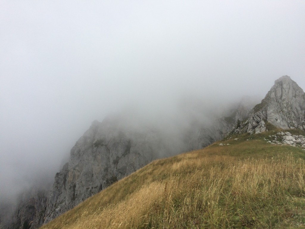 Vacheresse. Départ des chalets de Bise (1502 m) arrivée dans la brume au sommet de la pointe de Chavis (2075 m) par le col de Bise. Observation : un bouquetin et un épervier.