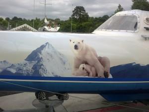 L'ours polaire, l'emblème du projet