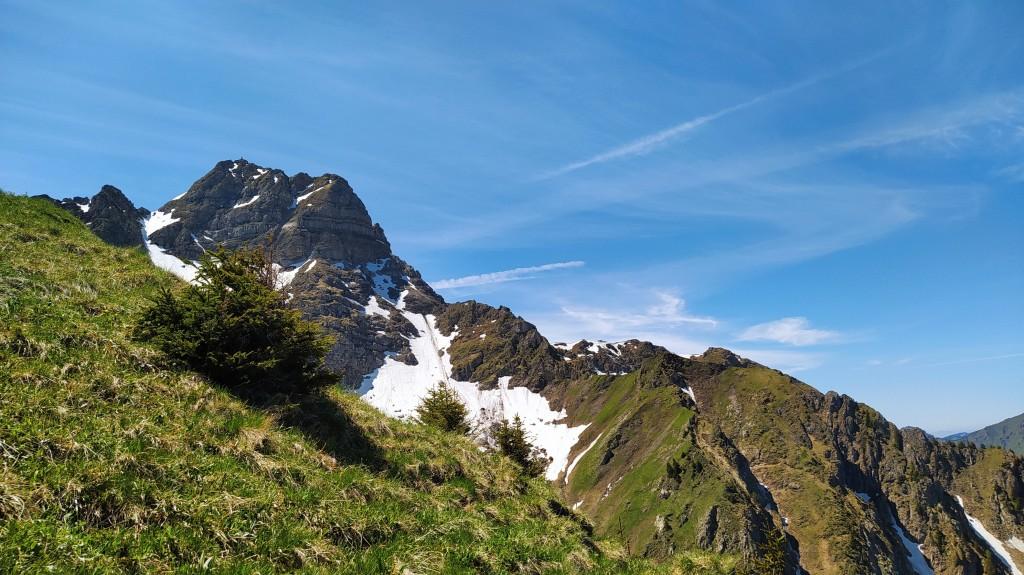 Vue du Mont de Grange 2432 m du col de la Corne 2159 m
